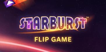 flip game